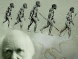 Et Darwin dans tout ça ? Par Internetopterix…